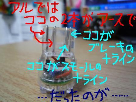 P1030599al.JPG